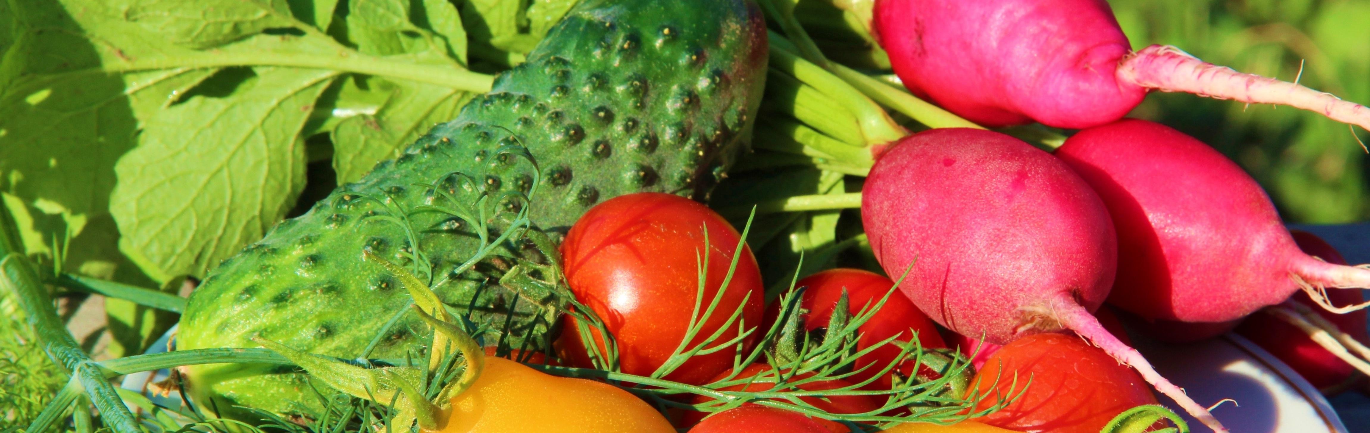 Duurzaam eten